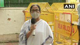 Mamata Banerjee talking to the press outside Nitin Gadkari's residence